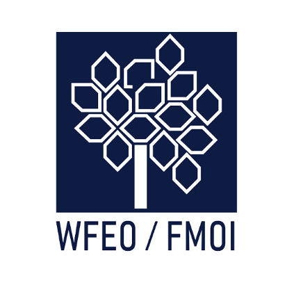 Call for applications – WFEO Distinguished Fellowship